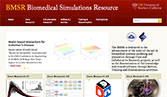 Biomedical Simulations Resource